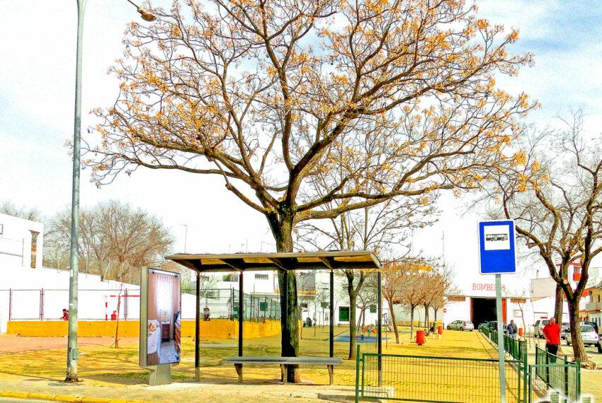 022 Alrededores Parada de Bus y acceso a parque